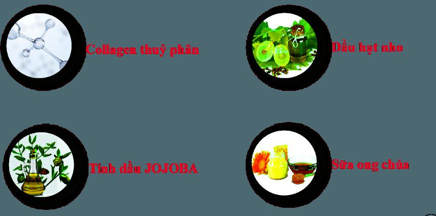 Đánh Giá] Kem chống lão hóa 22 Again 12