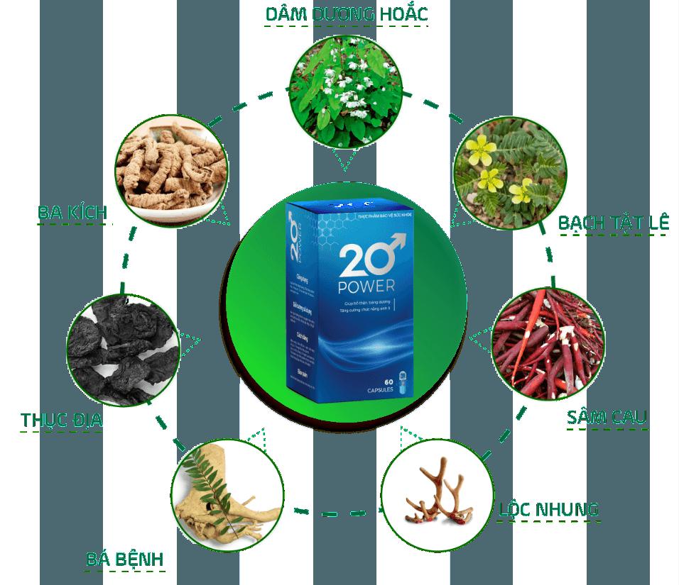 Thành phần chính 20 Power